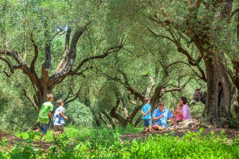 Italien, Cilento, Agriturismo Le Favate