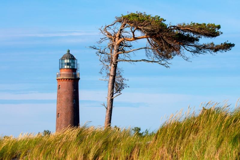 Darßer Urwald am Ostseestand bei Prerow, Leuchtturm Darßer Ort.
