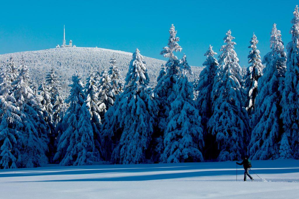 Oberharz, Torfhaus, Blick zum Brocken.