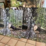 Die kleine Waldgalerie