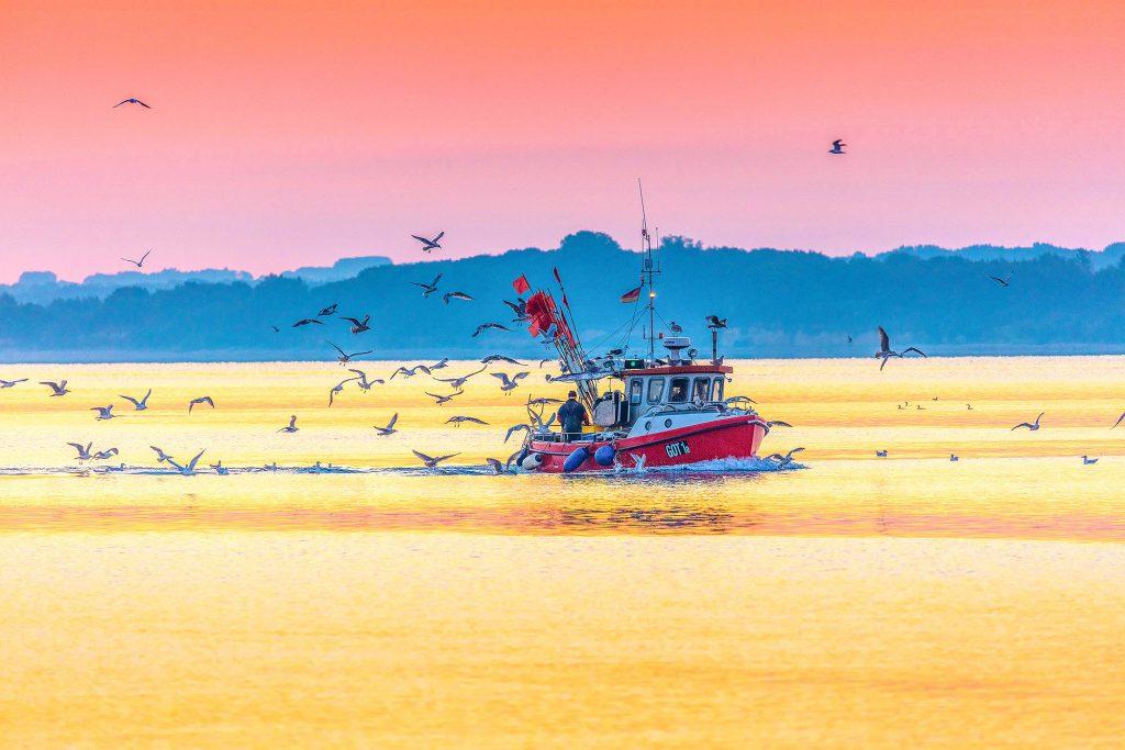 Schleswig-Holstein, Travemünde, Fischerboot in der Morgendämmerung