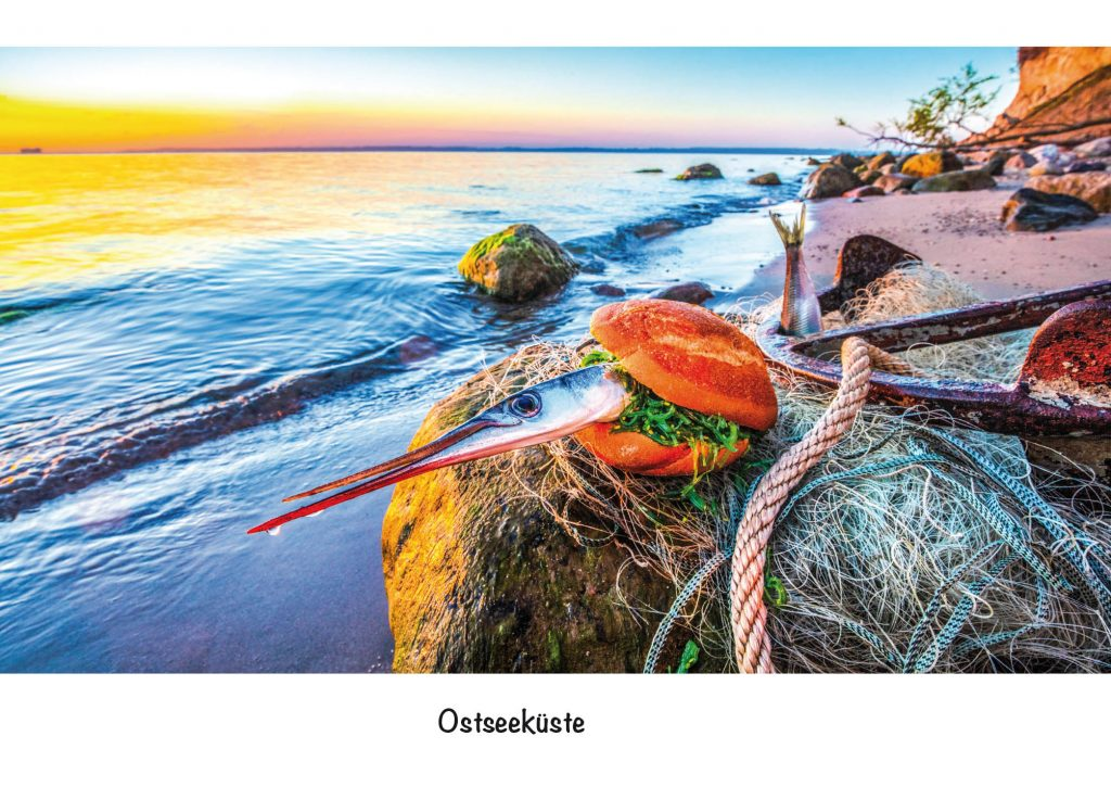 Ansichtskarte, Postkarte Ostseeküste. Strandgut Bild Küstenburger